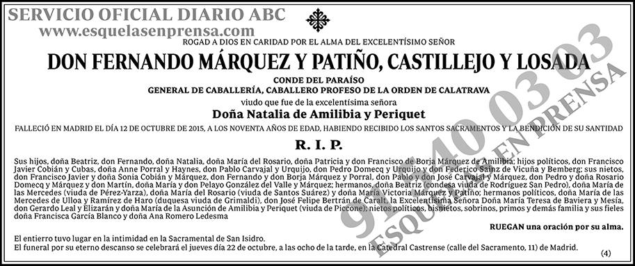 Fernando Márquez y Patiño, Castillejo y Losada